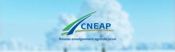 Le CNEAP vous souhaite ses meilleurs vœux